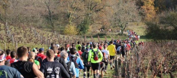 Retrouvez nous le 8 décembre du côté de Bouliac (33 – Gironde) pour courir tous ensemble pour le Téléthon !