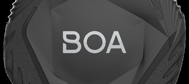 INTERVIEW BOA : de son origine à son application