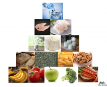 Les bases d'une alimentation saine et équilibrée
