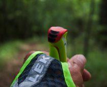 Leki Micro Trail Vario : l'iconique bâton de trail passe-partout