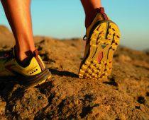 Brooks Cascadia 16 : explore tous les terrains de jeu de Trail Running